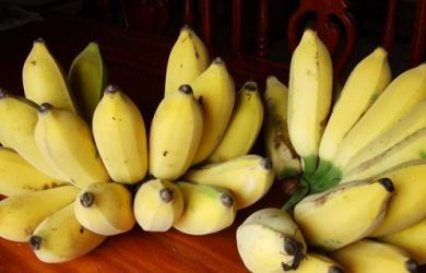 3 loại quả ăn sai thời điểm không những phá hủy dinh dưỡng mà còn gây hại cho sức khỏe