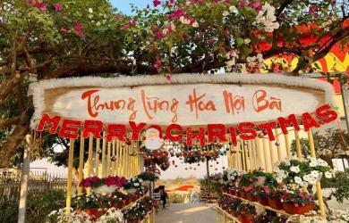 Khám phá thung lũng hoa 4 mùa đẹp ngất ngây ngay sát vách Hà Nội